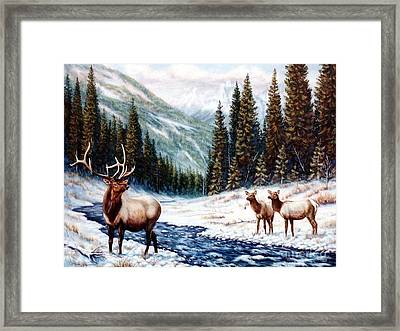 The Wild Country Framed Print by Tom Chapman