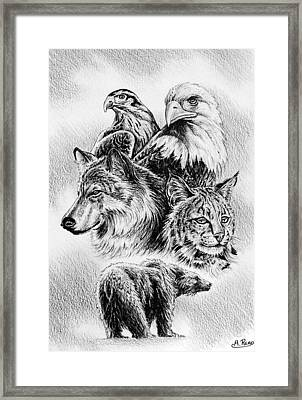 The Wildlife Collection 1 Framed Print by Andrew Read