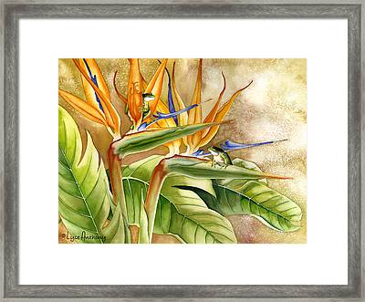 The Windsurfers Framed Print by Lyse Anthony
