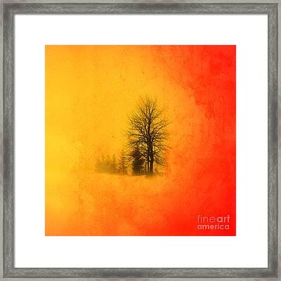 Thee Tree  Framed Print by Mark Ashkenazi