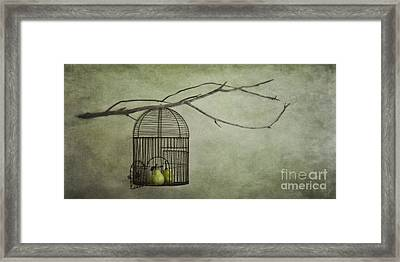 There Is A World Outside Framed Print by Priska Wettstein