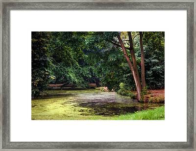 There Is Always A Hope. Park Of De Haar Castle Framed Print by Jenny Rainbow