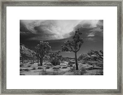 There Will Be A Way Framed Print by Laurie Search