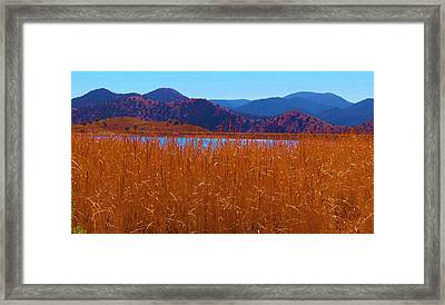 There's A Lake Over There Framed Print by Feva  Fotos
