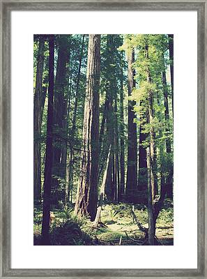 Things That Sparkle Framed Print by Laurie Search
