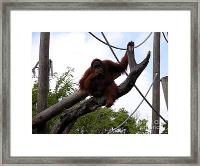 Thinking Of You Framed Print by Joseph Baril
