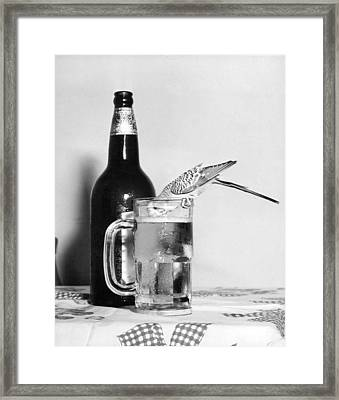 Thirsty Bird Framed Print by Retro Images Archive