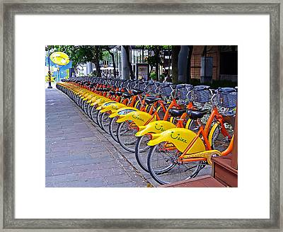 Thirty Yellow Bicycles In Taipei Framed Print by Tony Crehan
