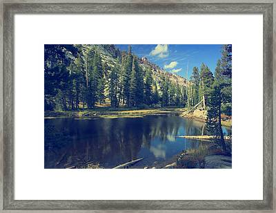 This Beautiful Solitude Framed Print by Laurie Search