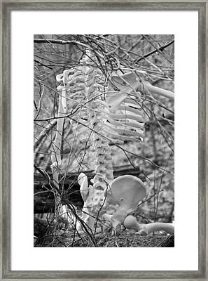 This Is Your Spinal Notice Framed Print by Betsy Knapp