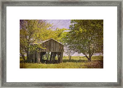 This Old Barn Framed Print by Joan Carroll