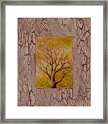This Old Tree Framed Print by Darice Machel McGuire