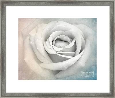 This Or That Framed Print by Sabrina L Ryan