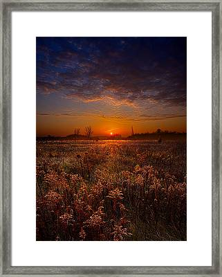 This Time Around Framed Print by Phil Koch