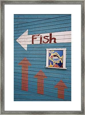 This Way To The Fish Framed Print by Carol Leigh