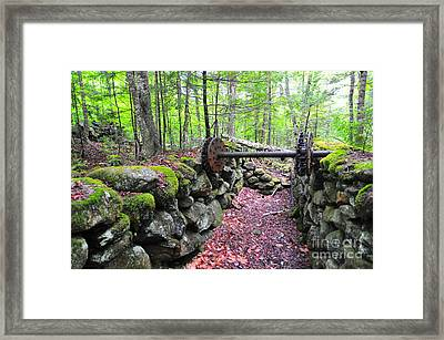Thornton Gore Saw Mill Ruins Framed Print by Catherine Reusch  Daley