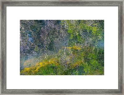 Thornton's Canvas Framed Print by Roxy Hurtubise
