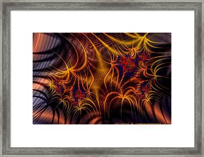 Thornweb In Amberorange  Framed Print by Ann Stretton