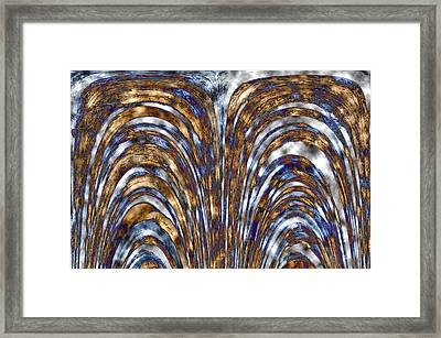 Those Golden Arches Framed Print by Carolyn Marshall