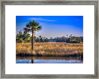 Those Quiet Sounds Framed Print by Marvin Spates