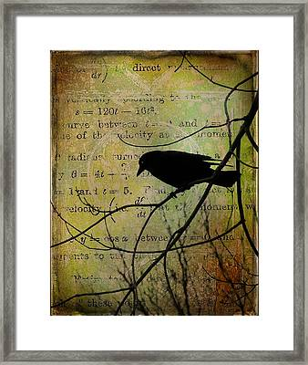 Thoughts Of Crow Framed Print by Gothicolors Donna Snyder