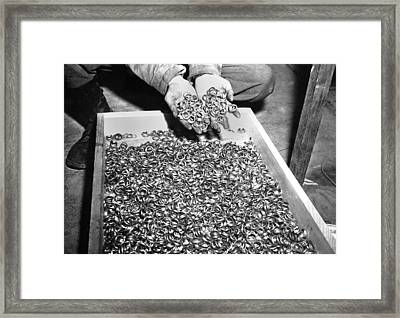 Thousands Of Gold Wedding Rings Removed Framed Print by Everett
