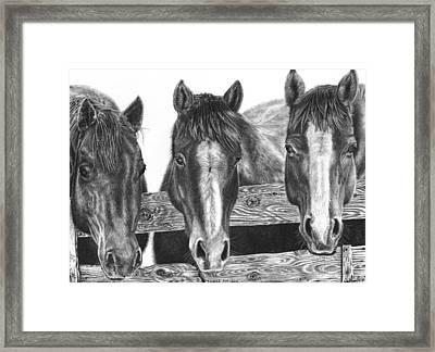 Three Amigos Framed Print by Glen Powell
