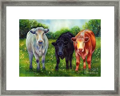 Three Amigos Framed Print by Hailey E Herrera
