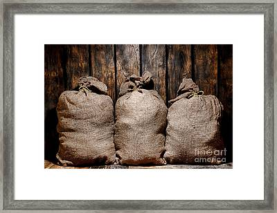 Three Bags In A Warehouse Framed Print by Olivier Le Queinec
