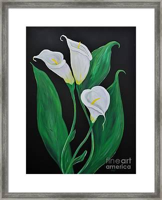 Three Calla Lilies On Black Framed Print by Janice Rae Pariza