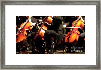 Three Cellos Framed Print by Paddy Shaffer