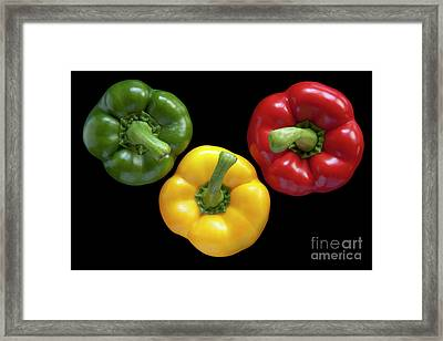 Three Colors Framed Print by Heiko Koehrer-Wagner