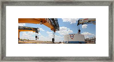 Three Cranes Framed Print by Chris Martin