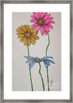 Three Daisies Framed Print by Marcia Weller-Wenbert