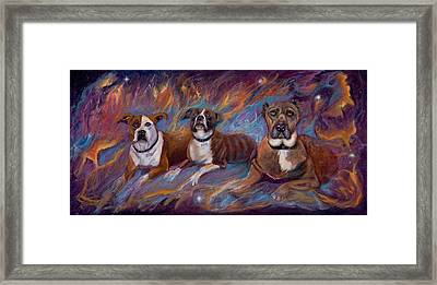 If Dogs Go To Heaven Framed Print by Sherry Strong