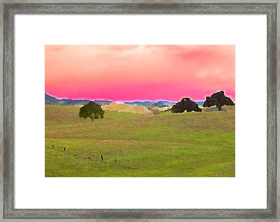 Three Live Oaks Framed Print by Charlette Miller