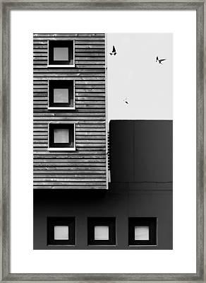 Three Framed Print by Manu D