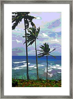 Three Palms Framed Print by Douglas Simonson