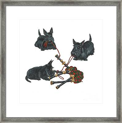 Three Scotties And The Pipes Framed Print by Margaryta Yermolayeva