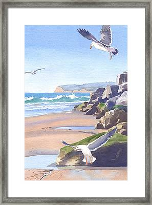 Three Seagulls At Coronado Beach Framed Print by Mary Helmreich