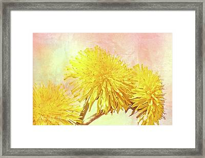 Three Simple Things Framed Print by Bob Orsillo