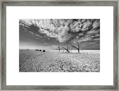 Three Sisters And Five Boxes Framed Print by Peter Tellone
