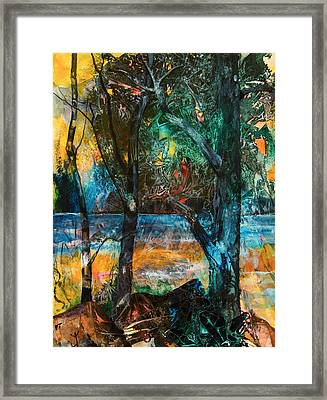 Three Sisters Framed Print by Patricia Allingham Carlson