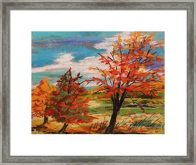 Three Trees Changing Framed Print by John  Williams