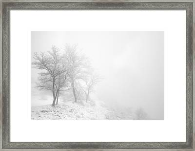 Three Trees In The Fog Framed Print by Guido Montanes Castillo