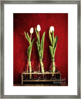Three White Tulips Floral Framed Print by Edward Fielding