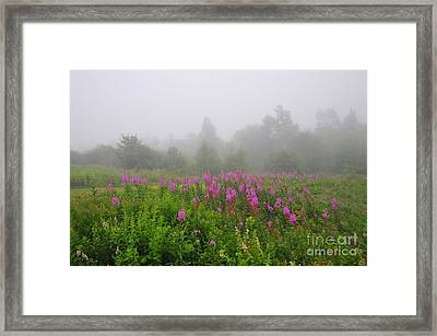 Through The Cloud Framed Print by Catherine Reusch  Daley