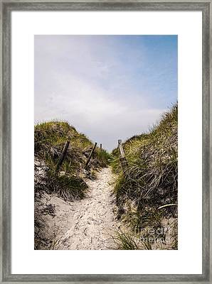 Through The Dunes Framed Print by Hannes Cmarits