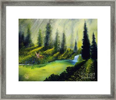 Through The Trees Framed Print by David Kacey