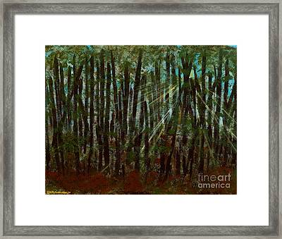 Through The Trees Framed Print by Hillary Binder-Klein